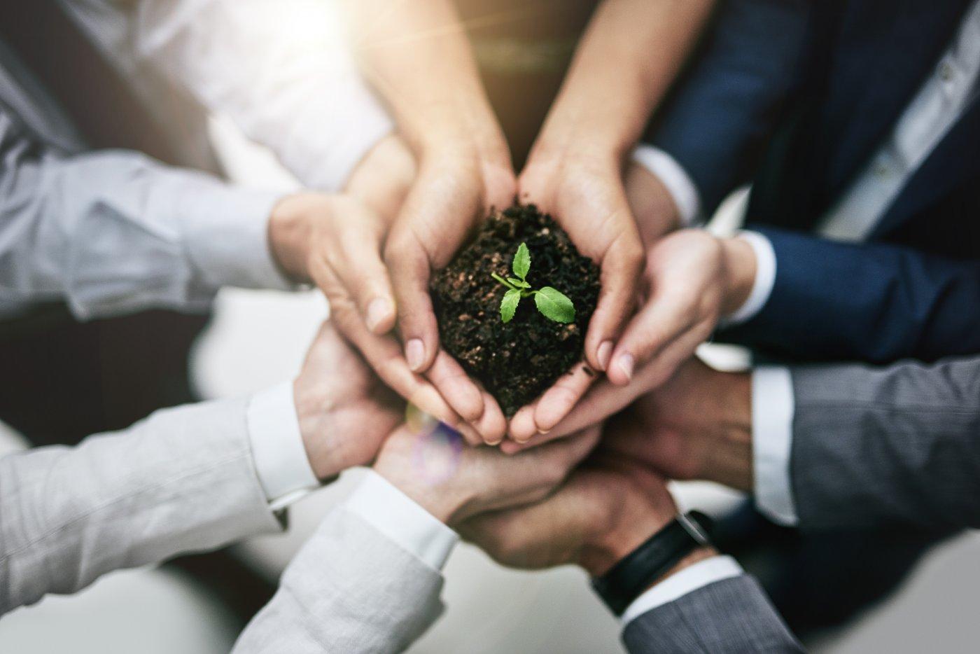 empresa-cuidado-medioambiente-ecología-responsabilidad-social-corporativa